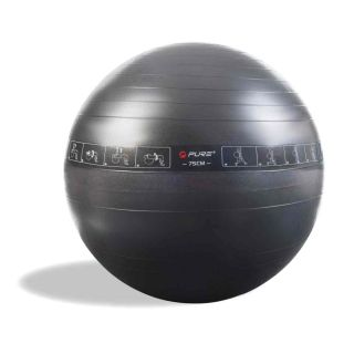 Pure2Improve Yoga Core Exercise Trainer Stability Gym Ball 75cm